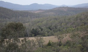 Mountain Creek Game Park, Gympie Queensland Australia - Hunting, Camping, Photography