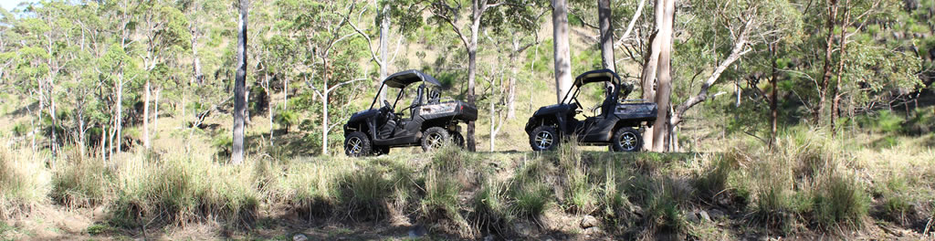 Mountain Creek Deer Hunting Safaris in Australia.